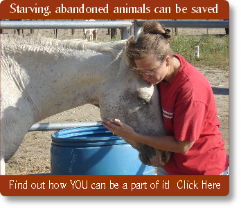 Starving, abandoned animals can be saved
